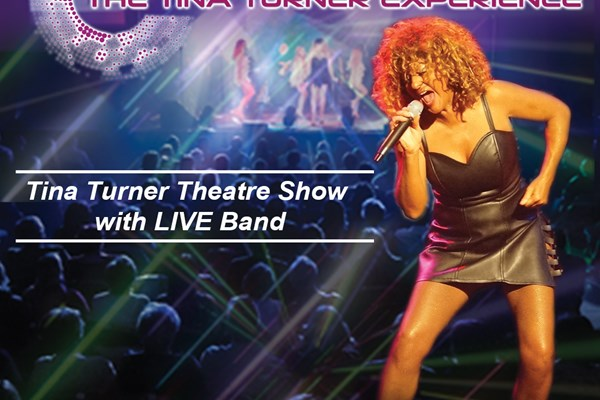 The Tina Turner Experience Show